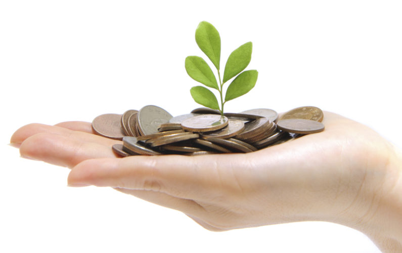 hand full of money and holding a green plant
